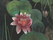 Water Pastels - Pond Lily by Ginny Neece