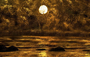 Reflections Digital Art Prints - Pond of Gold Print by Paul St George