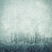 Pondering Silence Print by Priska Wettstein