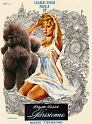 Parisienne Painting Prints - Poodle Art - Una Parisienne Movie Poster Print by Sandra Sij