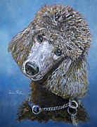 Pet Portraits Acrylic Prints - Poodle Gaze by Enzie Shahmiri