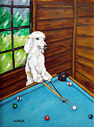 Jay Schmetz Metal Prints - Poodle Plying Pool Metal Print by Jay  Schmetz