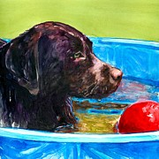 Chocolate Lab Framed Prints - Pool Party of One Framed Print by Molly Poole