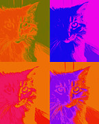 Photo Collage Digital Art Prints - Pop Art Cat  Print by Ann Powell