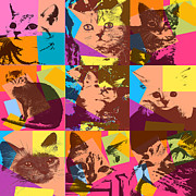 Kittens Digital Art - Pop Art Cats by David G Paul