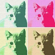 Kittens Digital Art - Pop Art Kitties. by Terry Collett