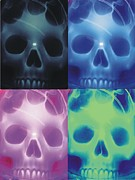 Christopher Fresquez - Pop Art Skulls