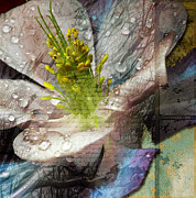 Fall Photos Mixed Media Prints - Pop Iii Print by Yanni Theodorou