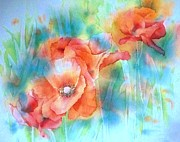Mohnblume Prints - Poppies 4 Print by Thomas Habermann