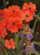 Deb Bartos - Poppies and Iris