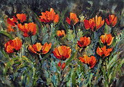 Wa Paintings - Poppies at Manito Park by Lynne Haines