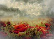 Surreal Art Mixed Media - Poppies From Heaven - Vintage by Zeana Romanovna
