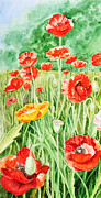 Orange Poppy Paintings - Poppies Impressions II by Irina Sztukowski