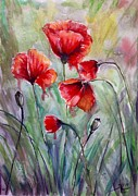 Katerina Kovatcheva - Poppies