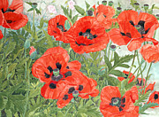 Red Flower Paintings - Poppies by Linda Benton