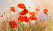 Free Shipment Painting Framed Prints - Poppies on Field Framed Print by Petrica Sincu
