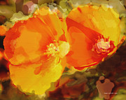 Most Viewed Posters - Poppies on Fire Poster by Author and Photographer Laura Wrede