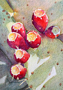 Debbie Painting Posters - Popping Prickly Pear Poster by Deb  Harclerode