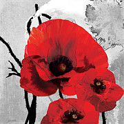 Grace Pullen - Poppy Black and White B