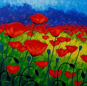 Modern Landscape Paintings - Poppy Corner II by John  Nolan