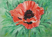 Ellen Canfield - Poppy