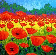 Poppy Field V Print by John  Nolan