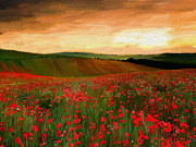 Surroundings Digital Art Posters - Poppy Fields Poster by James Shepherd