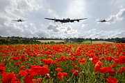 Lancaster Bomber Digital Art - Poppy Flypast by James Biggadike