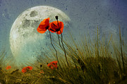 Poppy In The Moon Print by manhART