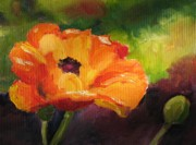 Deb Bartos - Poppy Passion