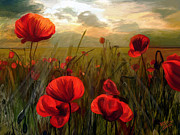 Surroundings Digital Art Posters - Poppy Rays Poster by James Shepherd