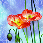 Flowers Greeting Cards Posters - Poppy series - Garden Views Poster by Moon Stumpp