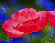 Garden Greeting Color Prints - Poppy series - Touch Print by Moon Stumpp