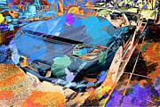 Porsche Boxster Roadster Print by SM Shahrokni