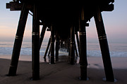 Wood Photos - Port Hueneme Pier Pilings by John Daly