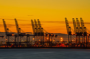 Port Of Felixstowe Print by Svetlana Sewell