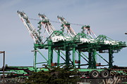 Cranes Photo Prints - Port of Oakland 5D22265 Print by Wingsdomain Art and Photography