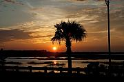 Palmetto Photos - Port Royal Sunset by Scott Hansen