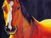 Original Horse Paintings - Portabello by Robert Hooper