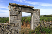 Viticulture Photo Prints - Portal of vineyard in Burgundy near Beaune. Cote dOr. France. Europe Print by Bernard Jaubert