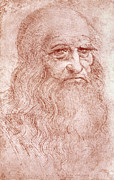 Self-portrait Painting Prints - Portrait of a Bearded Man Print by Leonardo da Vinci