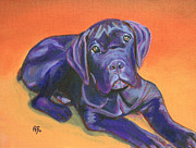 Robie Benve Prints - Portrait of a Black Puppy of Cane Corso - Italian Mastiff Print by Robie Benve