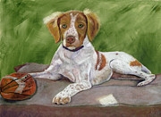 Barb Kirpluk - Portrait of a Brittany...