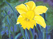Boston Paintings - Portrait of a Daffodil by Jennifer Frampton