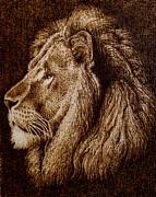 Lion Pyrography - Portrait of a Lion by Cara Jordan