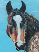 Mustang Pastels Metal Prints - Portrait of a Nokota Metal Print by Jeanne Fischer