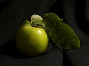 Food And Beverage Photo Originals - Portrait Of An Apple by Patricia McKay