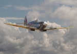 Aviation Prints - Portrait of an Icon Print by Pat Speirs