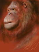 Orangutan Digital Art Metal Prints - Portrait of an Orangutan - Drawn on the iPad Metal Print by Ray Cassel