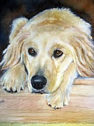 Custom Dog Portrait Paintings - Portrait Of Golden Retriever by Patricia Pushaw